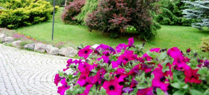 appartamenti-residence-bormio-gardenia-9