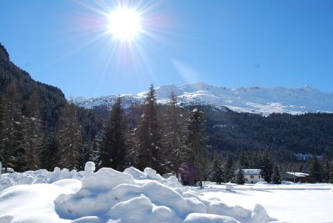 Ski Mountaineering Ortles-Cevedale