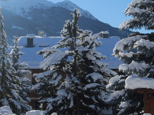 APARTMENT WITH FREE SKI PASS IN BORMIO