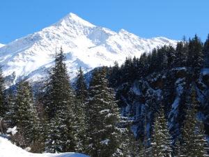 Gruppo mineralogico e naturalistico Alta Valtellina
