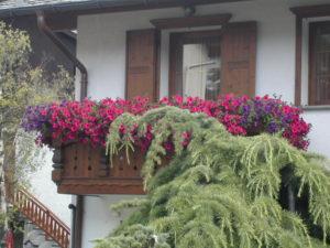 Balcone fiorito nelle Alpi